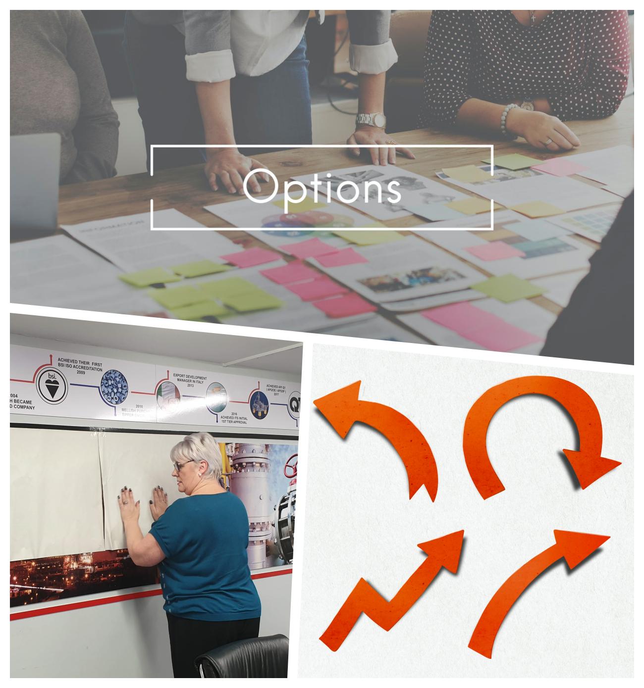 ZEST I/O Options Choices Blank Canvas