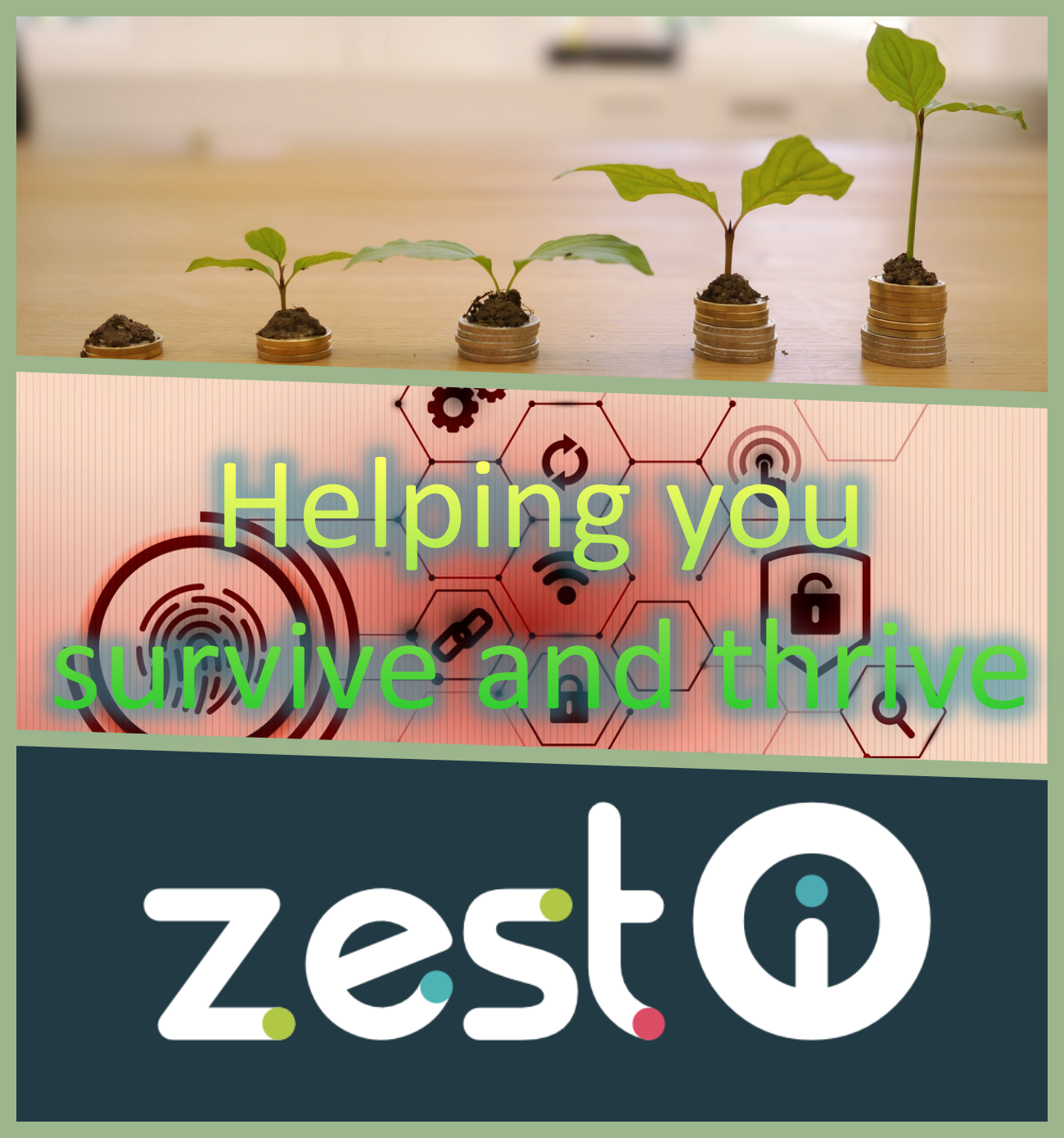 ZEST I-O Helping you survive and thrive