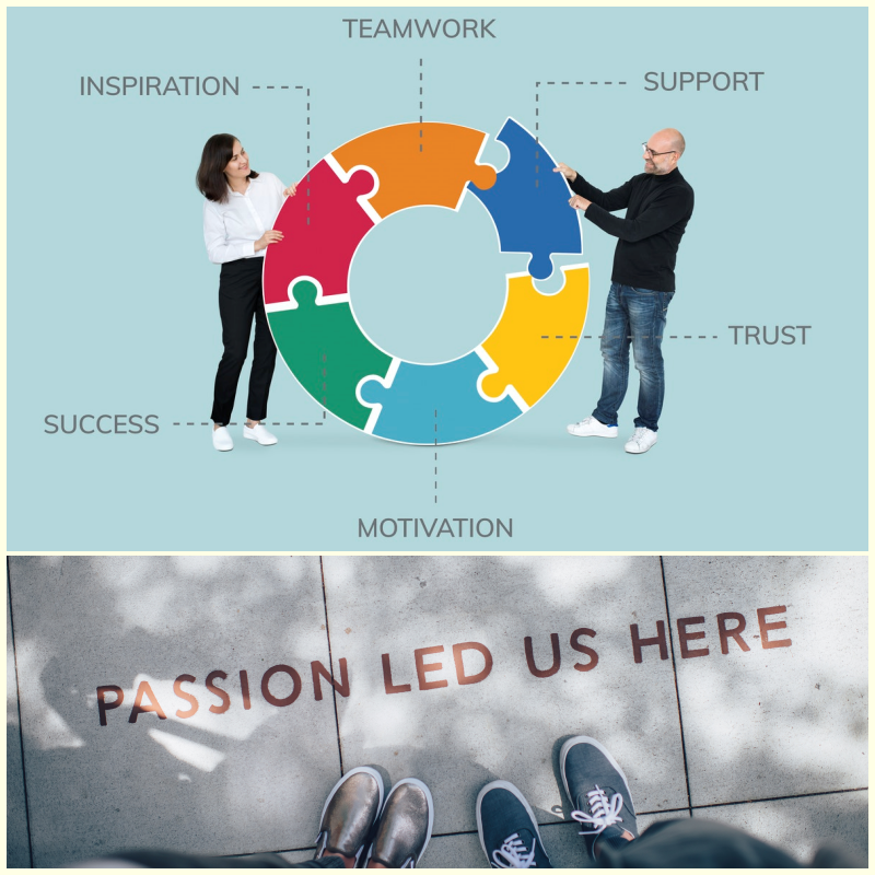 ZEST I-O Passion & Values